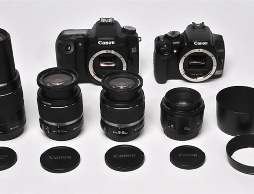 Camera Body, Lens and Equipment Must-Haves
